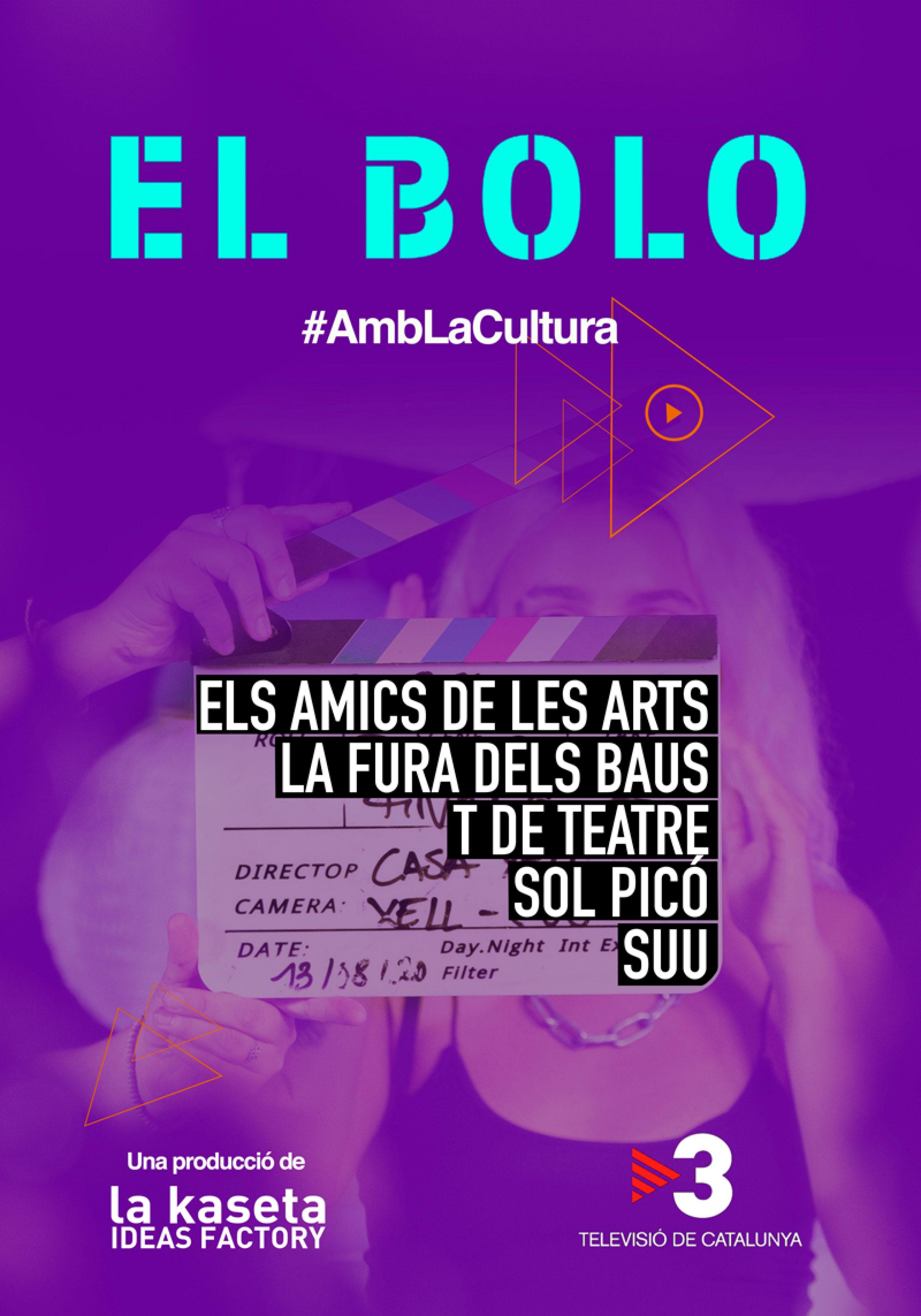 Poster_EL_BOLO_DEF
